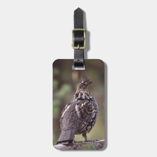 grouse luggage tags