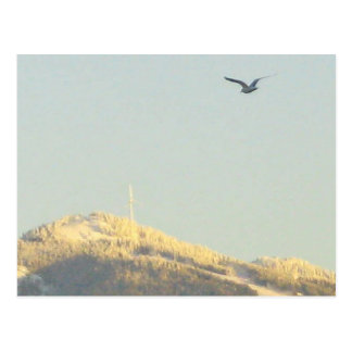 Grouse Mountain, BC Postcard