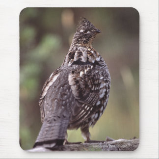 Grouse Mouse Pad