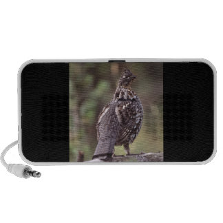 grouse notebook speakers