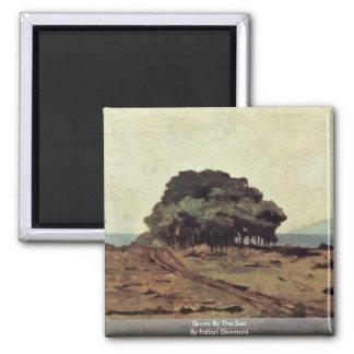 Grove By The Sea By Fattori Giovanni Fridge Magnets