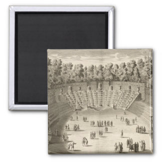 Grove of the Salle du Bal, Versailles, from 'Les P Magnets