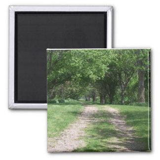 Grove Path Magnet