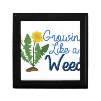 Grow Like Weed Small Square Gift Box