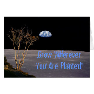 Grow Wherever You Are Planted Greeting Card
