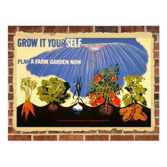 Grow your own garden - poster (vintage reprint)