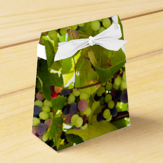Growing Wine Favour Box
