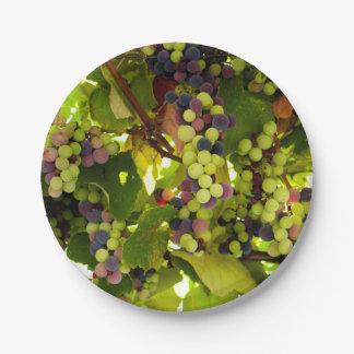 Growing Wine Paper Plate