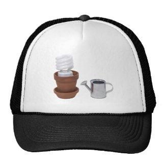 GrowingGreenClayPot062709 Mesh Hat