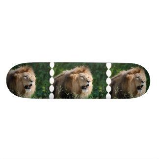 Growling Lion Skateboard