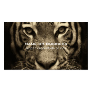 Growling Tiger Face in Sepia Tones Pack Of Standard Business Cards