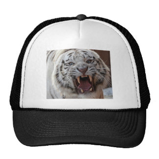 Growling White Tiger Trucker Hat