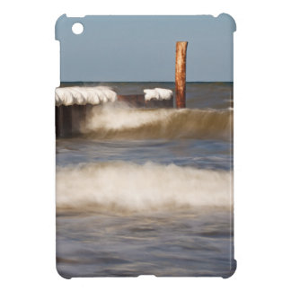 Groynes in winter on shore of the Baltic Sea iPad Mini Cases
