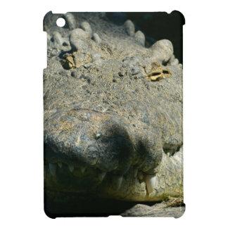 grrr gator chomp cover for the iPad mini