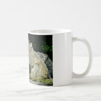 grrr gator chomp mugs