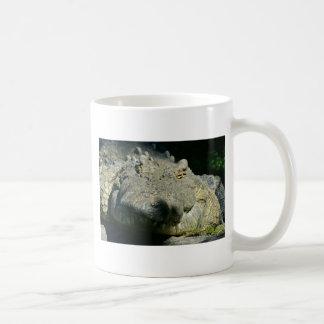 grrr gator chomp mug