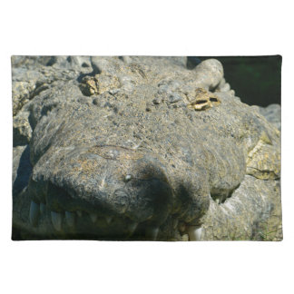 grrr gator chomp place mats
