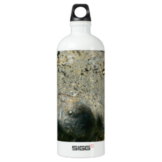 grrr gator chomp SIGG traveller 1.0L water bottle
