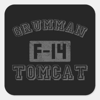 Grumman F-14 Tomcat Square Stickers