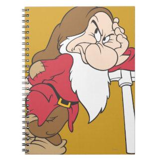 Grumpy 12 notebooks