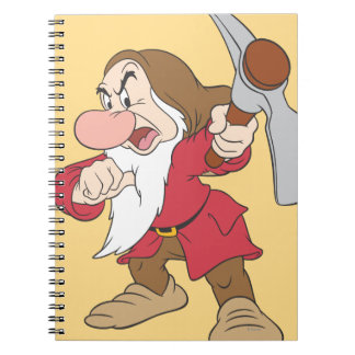 Grumpy 4 notebook
