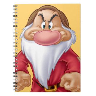 Grumpy 5 notebooks