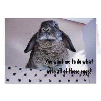 Grumpy Angry Easter Bunny Funny Humor Card