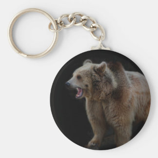 Grumpy Bear! Basic Round Button Key Ring