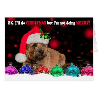 Grumpy Border Terrier Dog Wearing A Santa Hat, Wit Greeting Card