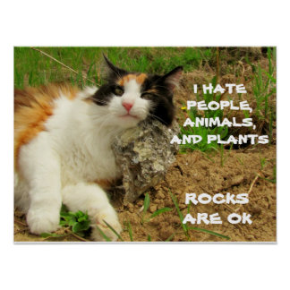 Grumpy Calico Hates Everything but Rocks Poster