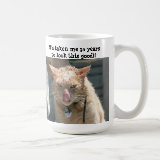 Grumpy Cat, 30 years to look this good! Mugs