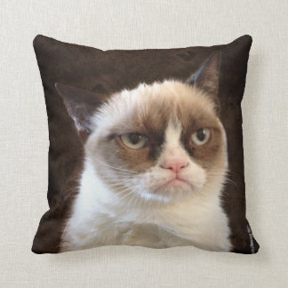 Grumpy Cat Brown Pillow
