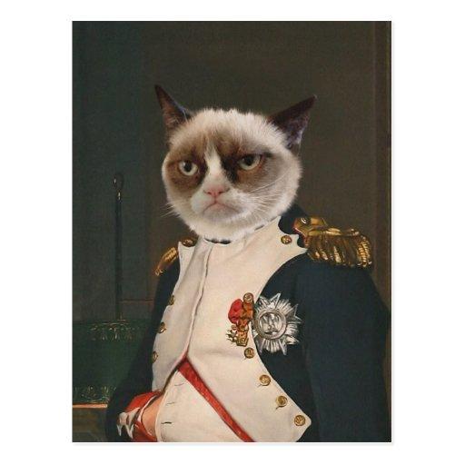 Grumpy Cat Classic Painting Postcard
