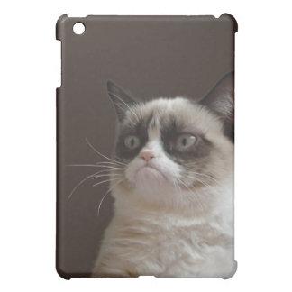 Grumpy Cat Glare