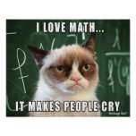 Grumpy Cat Poster- I love math it makes people cry Poster