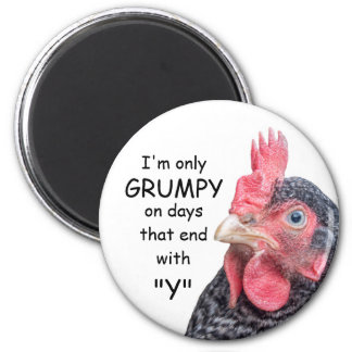 Grumpy Chicken Funny Frowning Hen Photo 6 Cm Round Magnet