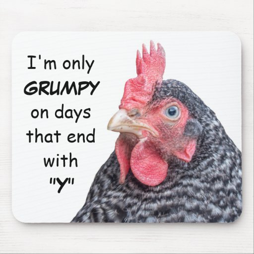Grumpy Chicken Funny Frowning Hen Photo Mouse Pad