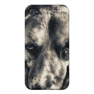 Grumpy Dog iPhone 4 case