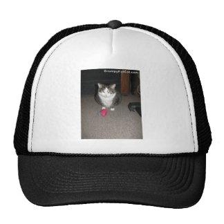 Grumpy Fat Cat is not amused Mesh Hats