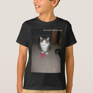 Grumpy Fat Cat is not amused T-Shirt