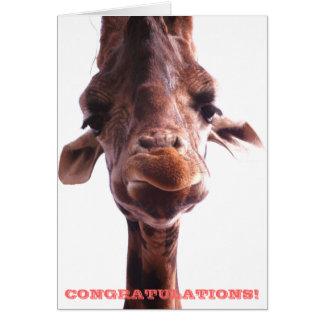 Grumpy Giraffe: Congratulations Card