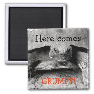 Grumpy Gopher Tortoise Design Square Magnet