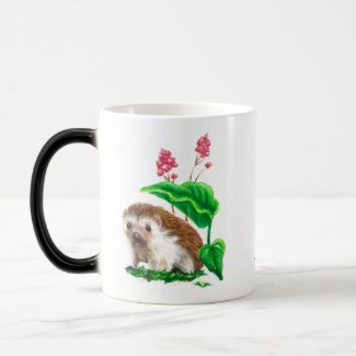 Grumpy/Happy hedgehog art colour change mug