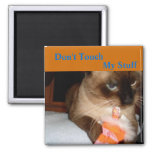 Grumpy Siamese Cat Fridge Magnet