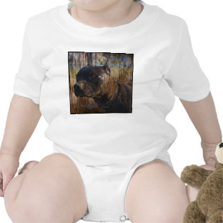 Grunge American Staffordshire Terrier Pitbull Shirts