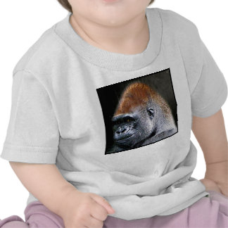 Grunge Lowland Gorilla Close-up Face T Shirt