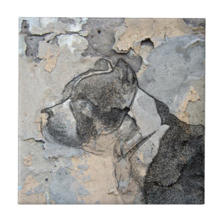 Grunge Pitbull terrier Tile