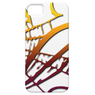 Grunge Spider Webs iPhone 5 Cover