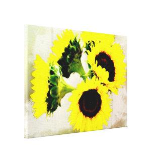 Grunge Sunflowers Canvas Print