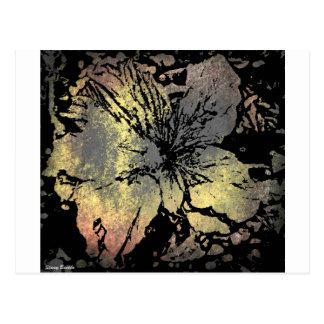 Grunge type flower postcard